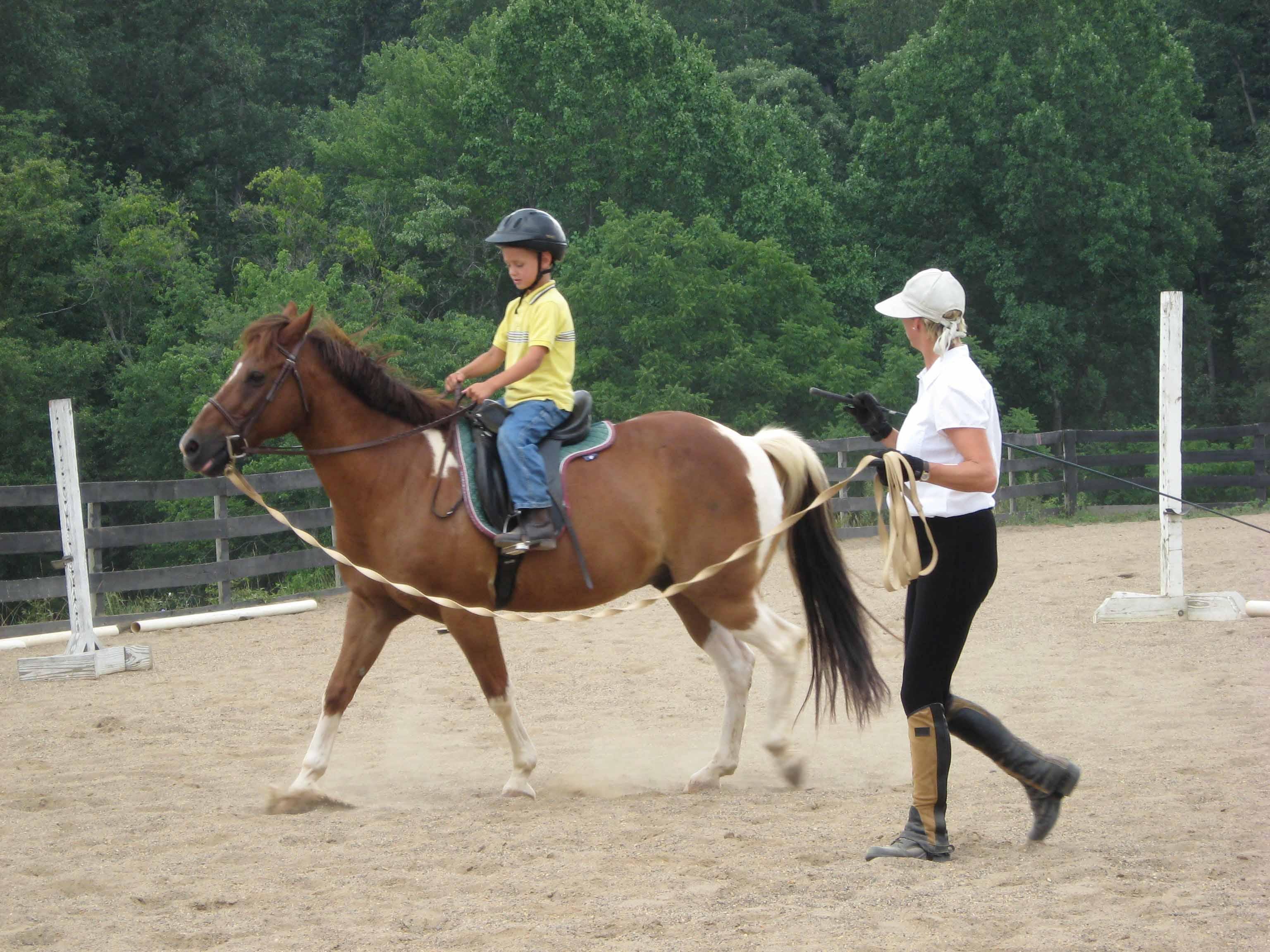 Beginning Horseback Riding Lesson