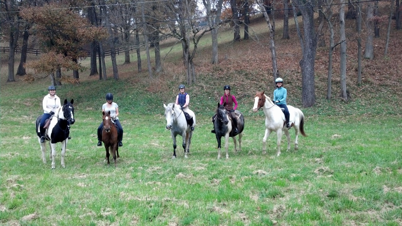 Horseback Riding at Manassas Battlefield