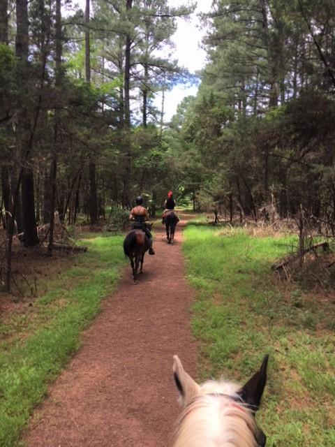 Horseback Trail Ride at Manassas Battlefield Park
